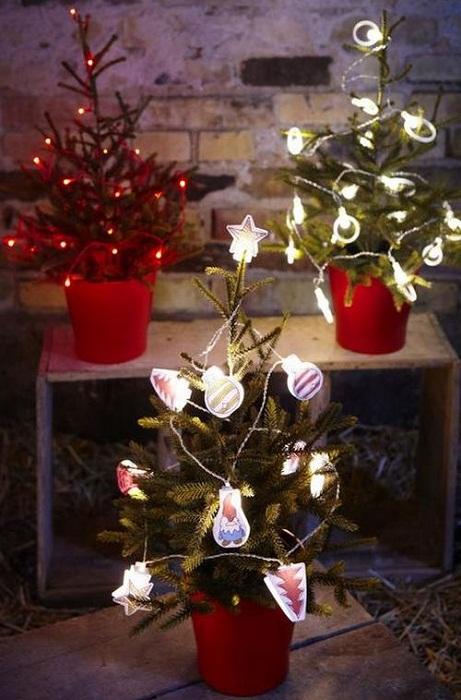 Отличное решение украсить крохотные новогодние красавицы с помощью гирлянд.