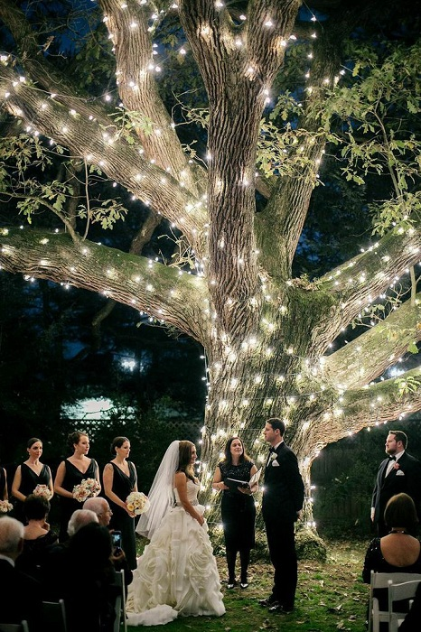 Симпатичный вариант оформить свадьбу возле шикарного дерева, которое украшено огоньками.