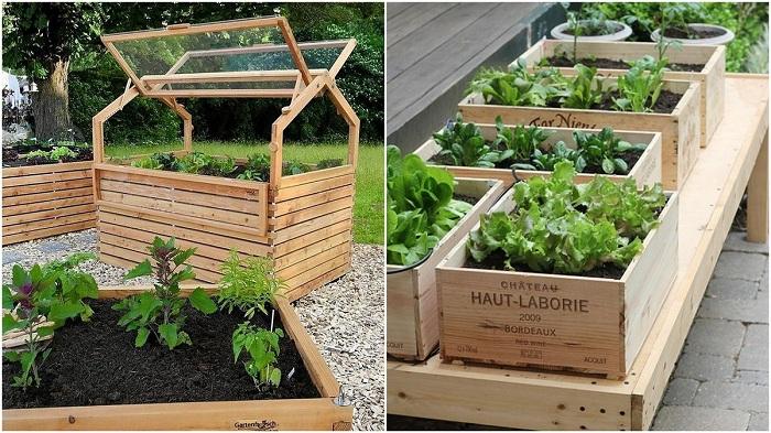 Отличные идеи для оформления грядок в саду и огороде.