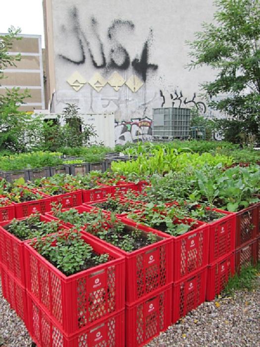 Пластиковые корзины возможно использовать для поднятого огорода над уровнем земли что создаст интересные варианты оформления сада и огорода.