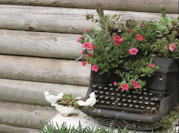 Печатная машинка - отличное украшение для любого сада, особенно с цветами в ней.