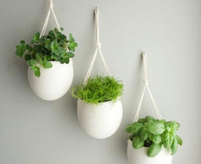 Красивое и интересное решение создать мини-сад с подвешенными горшочками, что понравятся и преобразят интерьер.