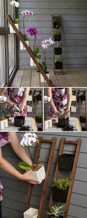 Пример того как возможно создать мини-сад своими руками в домашних условиях, без особого труда.