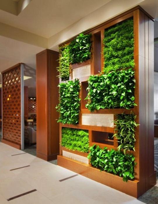 Отличным решением станет создание мини-сада дома прям в шкафу, что понравится и станет самым лучшим решением.