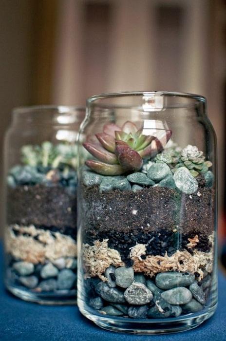 Прекрасный пример того, как возможно создать мини-сад в банках, очень простое и удачное решение.