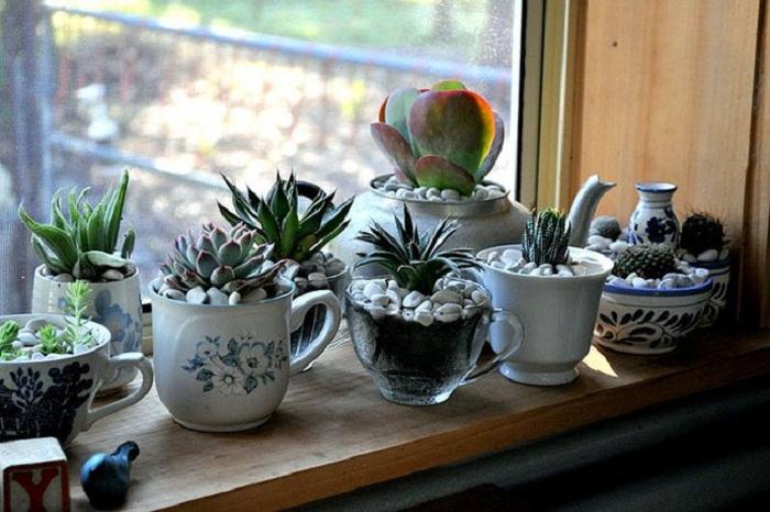 Атмосферу в комнате можно преобразить при помощи украшения подоконника симпатичным мини-садом, что вдохновит.