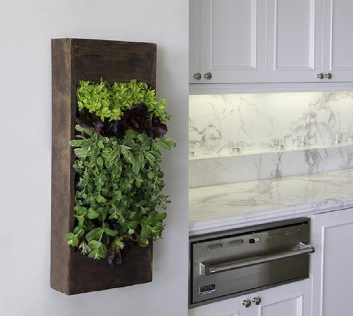 Красивое оформление мини-сада на кухне в котором возможно разместить любимые специи, что вдохновляет.