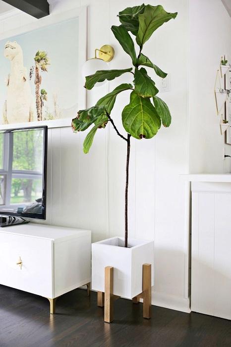 Комнатные цветы необходимо размещать на высоте, что позволит создать необычные дизайнерские решения.