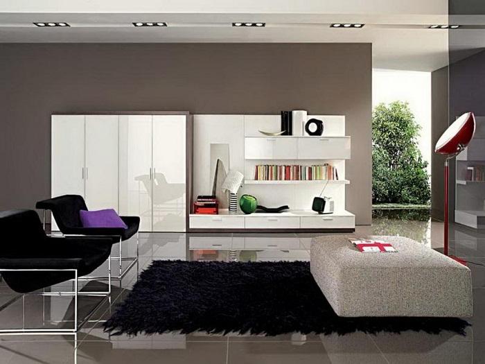 Безупречный и оригинальный интерьер гостиной в темных тонах с добавлением светлых ноток, что создаст яркие контрасты в доме.