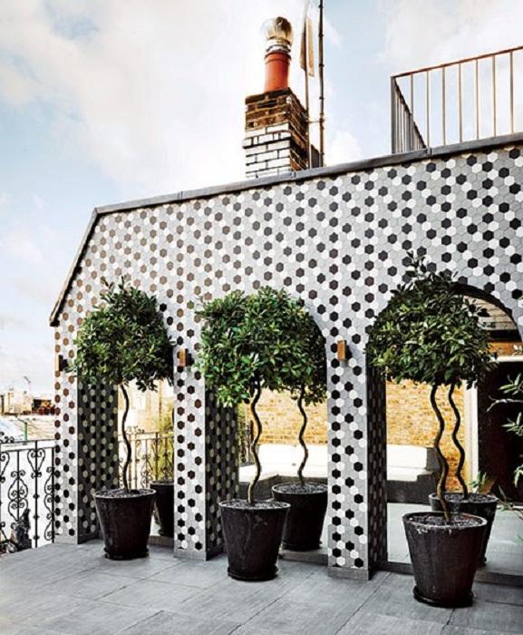 Открытое пространство на крыше с причудливыми деревьями, которые его украсили.