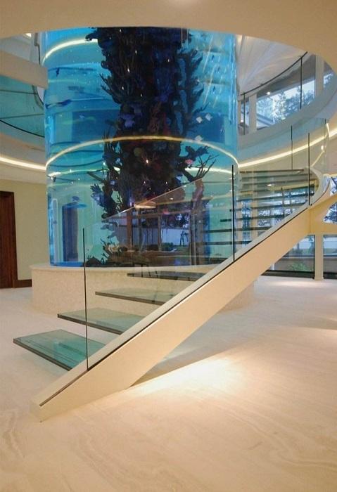 Очень креативное решение создать такую красивую лестницу около любимого аквариума.