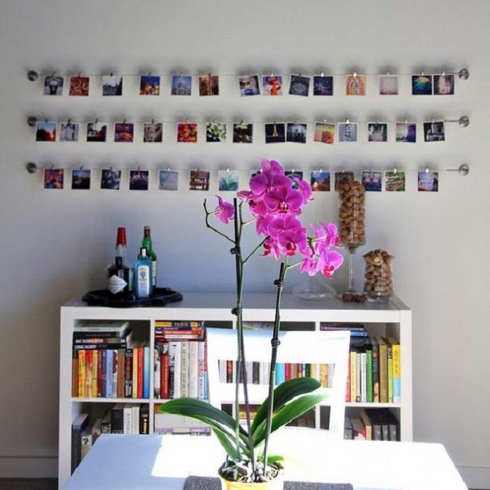 Хороший вариант преобразить интерьер разместить уйму любимых маленьких фотографий на стене.
