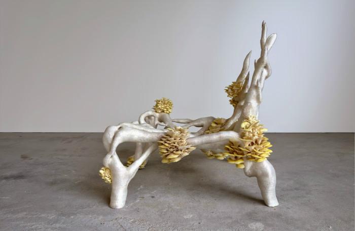 В качестве основного компонента для изготовления стула стала вегетативная часть грибов