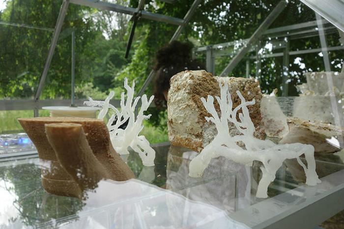 Чтобы сохранить необычный дизайн предмета, его покрыли биопластиком