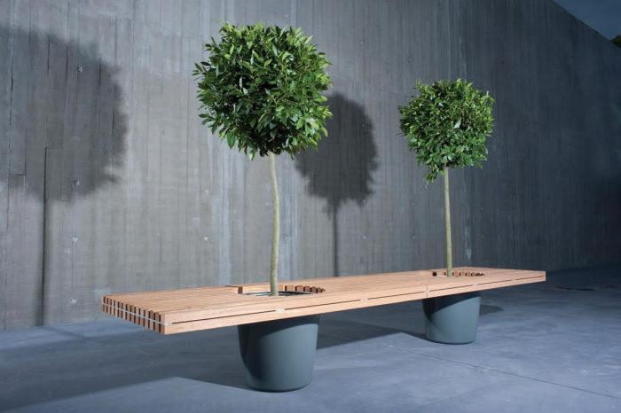 Деревянная скамейка под двумя декоративными деревьями.