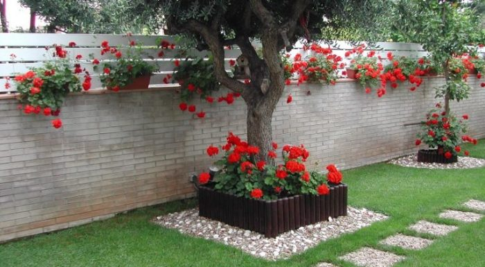 Растения и деревья, создающие романтическую атмосферу в саду.
