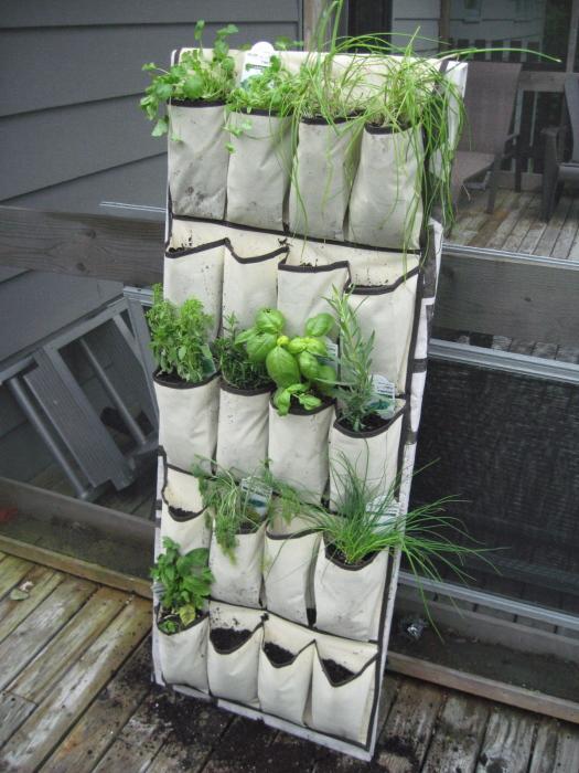 Плетённый органайзер для обуви и других мелких предметов можно использовать для выращивания растений как дома, так и на дачном участке.