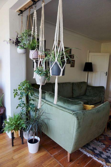 Подвесные кашпо для декоративных цветов и растений в интерьере гостиной комнаты.