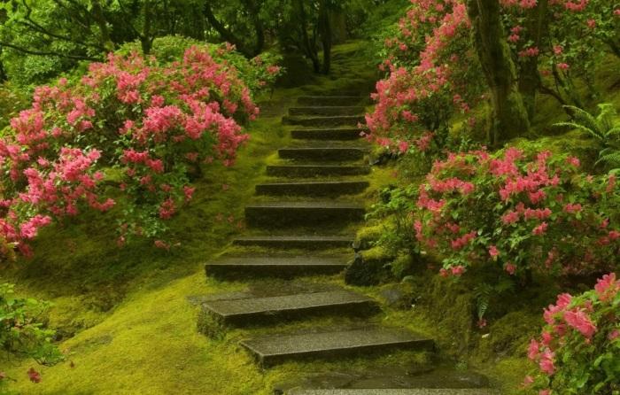Каменные ступеньки в интерьере садового участка позволят создать необычную атмосферу.