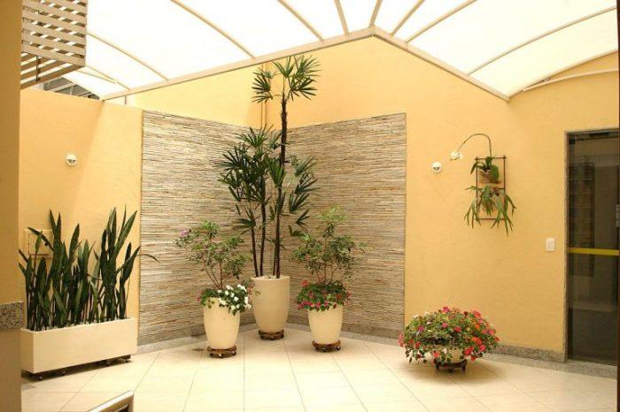 Декоративные растения в помещении - сказочная обстановка.