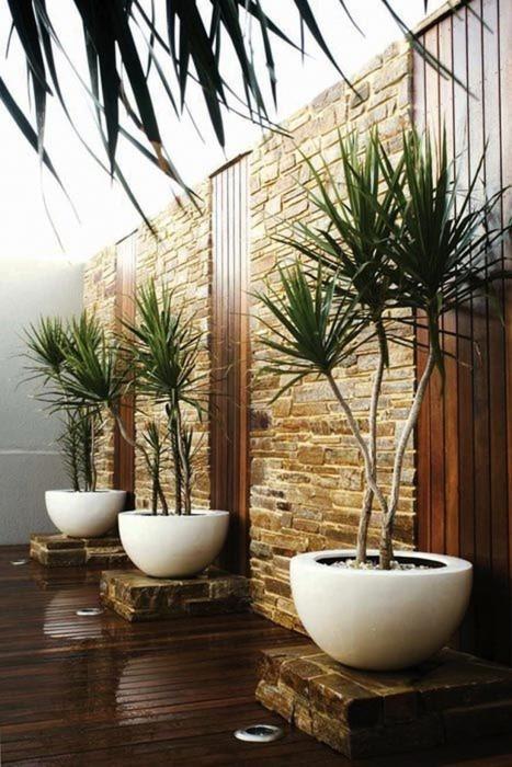Світлі кашпо для садової ділянки, які створять чарівну атмосферу.