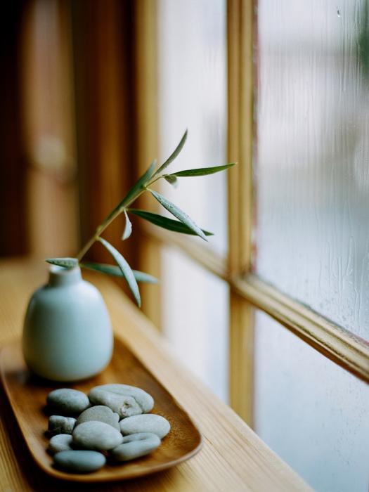 Маленький уголок с небольшим растением, в котором сохранена аутентичная атмосфера японского стиля.
