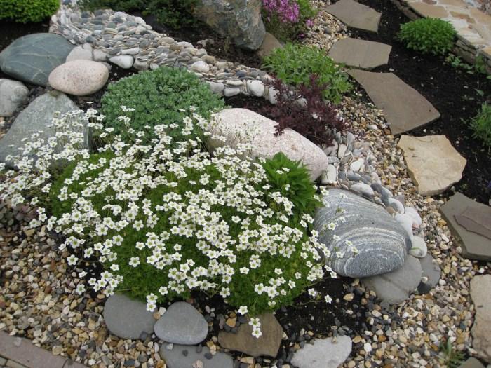 Имитация скалистых природных участков с множеством высокогорных растений.