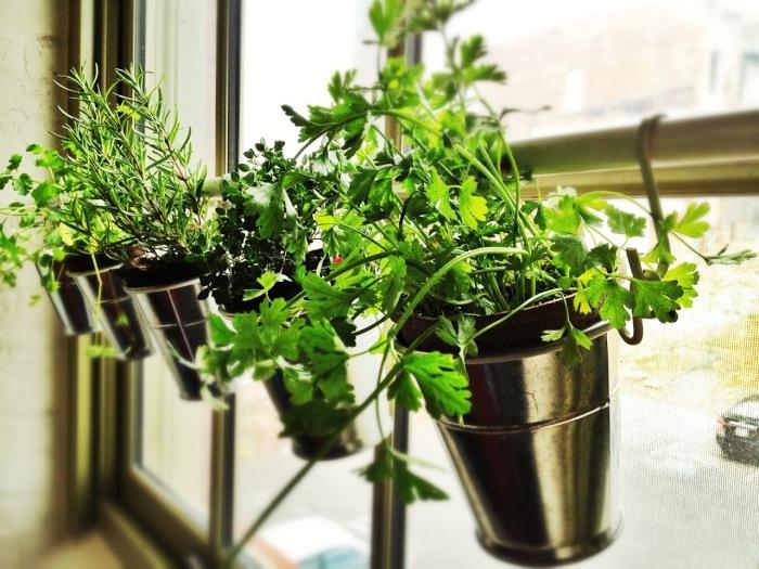Пластиковые стаканчики, которые можно использовать как емкости для цветочных горшков.