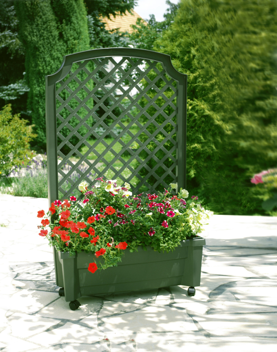 Полупрозрачная пластиковая перегородка с растениями позволит создать ощущение защищенности и единения с природой.