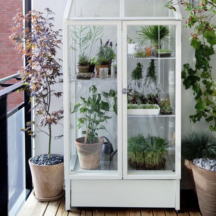 Застекленный шкаф позволит контролировать влагу и температуру.