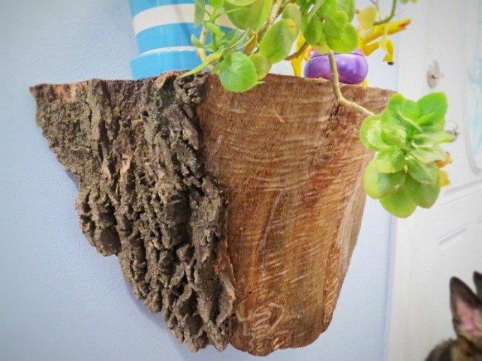 Плотный кусок коры или необработанной древесины можно превратить в фантастическую настенную полку для комнатных растений и цветов.
