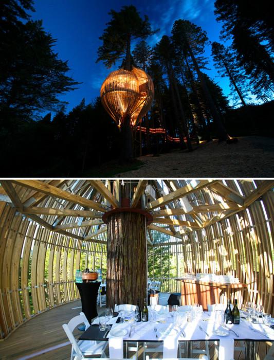 Романтический ужин в домике на дереве. Новая Зеландия, Уоркуэрт.