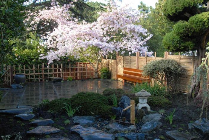 Японская вишня в саду отлично подойдет поклонникам восточной культуры.