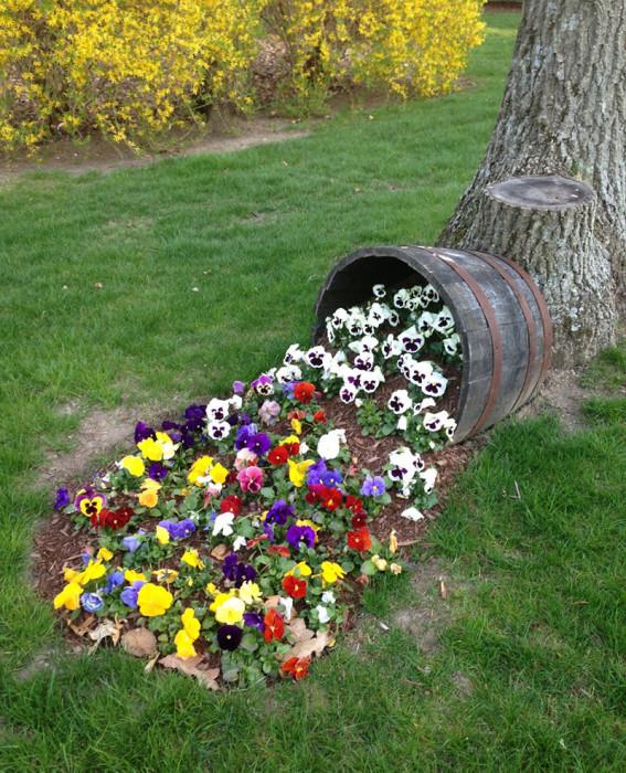 Цветочный ручей из деревянной бочки, который всегда привлечет к себе внимание гостей и соседей.