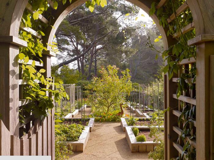 Средиземноморский сад очаровывает своей красочностью и геометрией посадок.