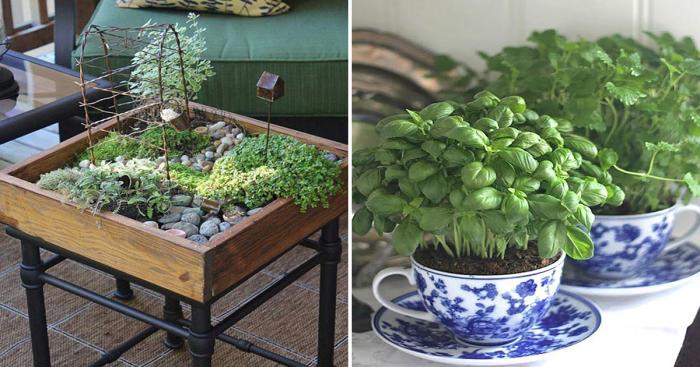 20 восхитительных идей озеленения интерьера, которые несложно реализовать дома.