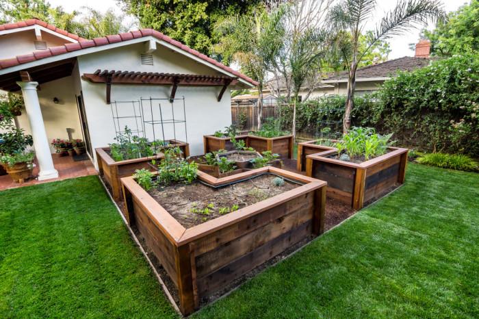 Высокие грядки и клумбы из деревянных досок практически идеальный вариант для выращивания любых растений и цветов.