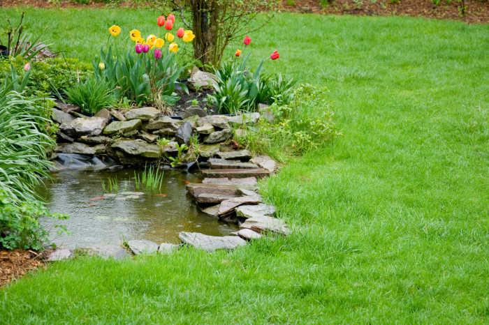 Выбор форм и размеров пруда во многом зависит от территории и рельефа садового участка.