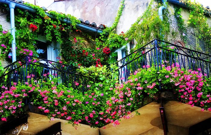 Восхитительные идеи озеленения балкона, которые удивят гостей и соседей.