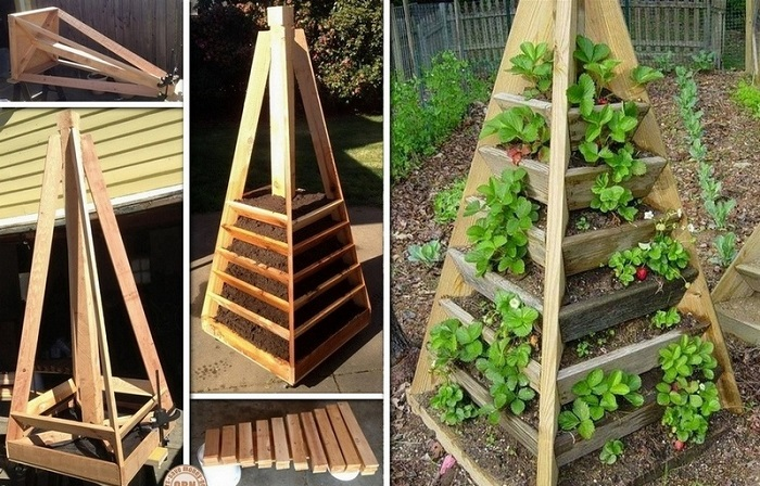 Секреты вертикального озеленения в квартире и на балконе своими руками.