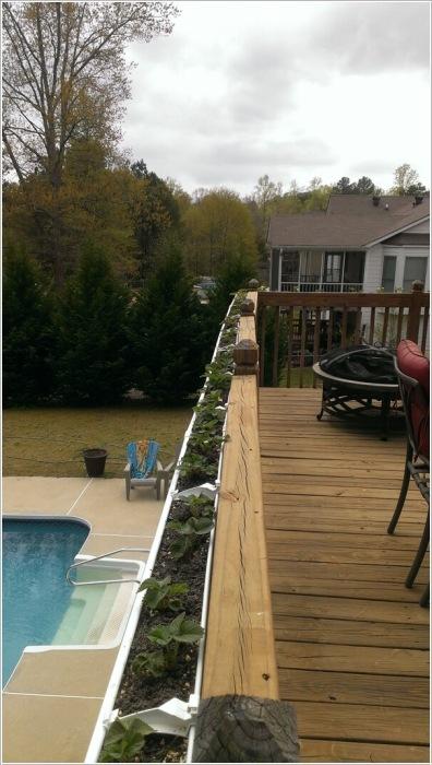 Оформить перила балкона помогут длинные ящики с кронштейнами.