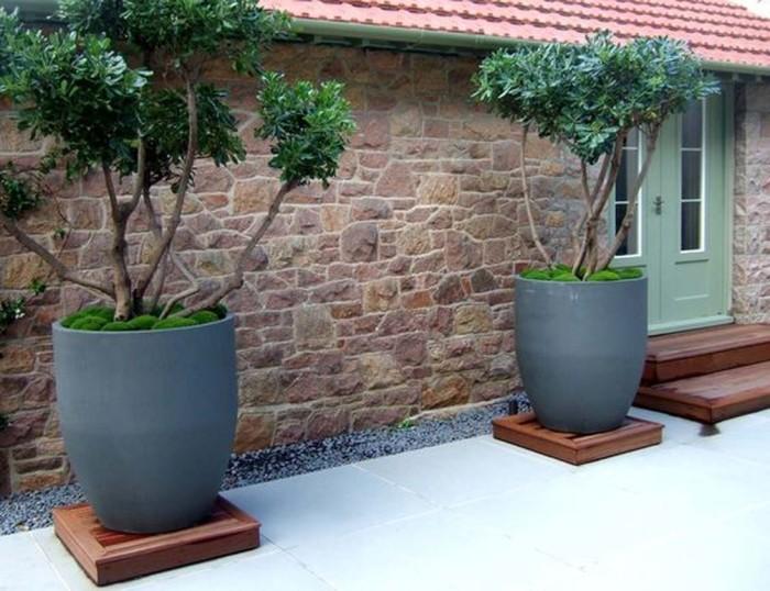 Самый простой способ украсить крыльцо - это разместить возле него большие кашпо для небольших деревьев.