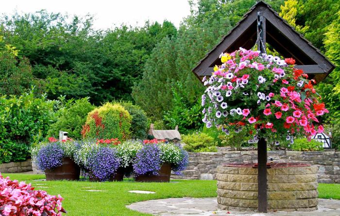 Удивительное озеленение садового участка, которое принесёт одно удовольствие садоводам и дачникам.