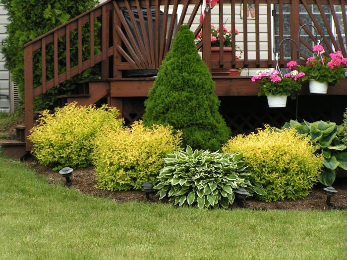 Обилие многолетних сортов растений, сдающее сказочную атмосферу.
