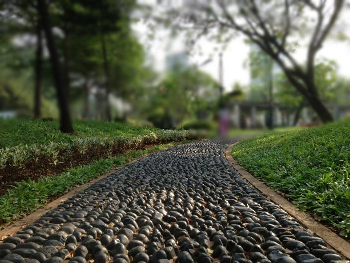 Садовая дорожка из гальки станет достойным обрамлением любого дачного участка.