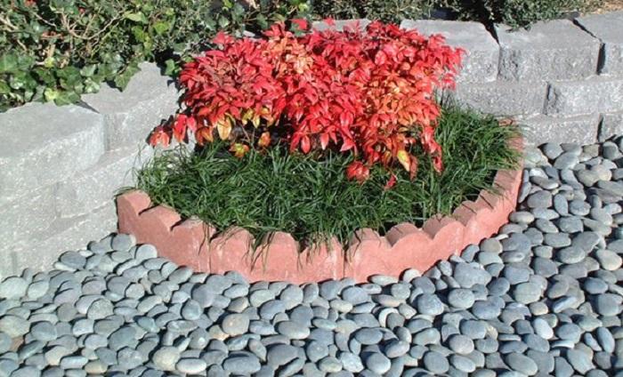Полукруглая форма небольшого цветника, который создан как отдельный элемент ландшафтного дизайна.