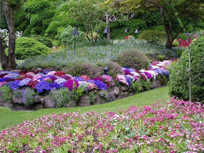 Цветник в котором удачно расположились разные сорта многолетних растений.