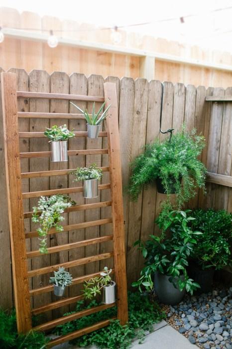 На сегодняшний день сделать вертикальное озеленение на территории дачного участка своими руками может позволить себе практически каждый.