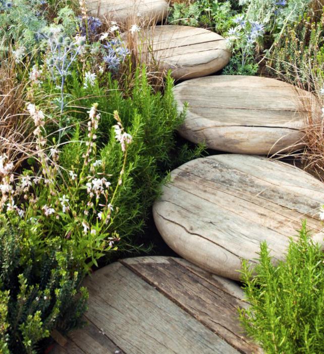 Садовая дорожка, сделанная из обработанных деревянных кругов.