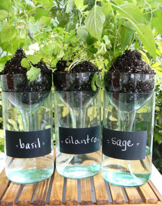 Современные дизайнеры предлагают создать цветочные горшки своими руками из стеклянных бутылок.